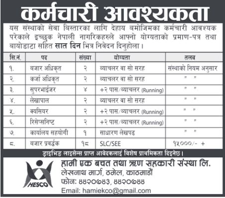 Accountant, Cashier, Marketing Officer & Other