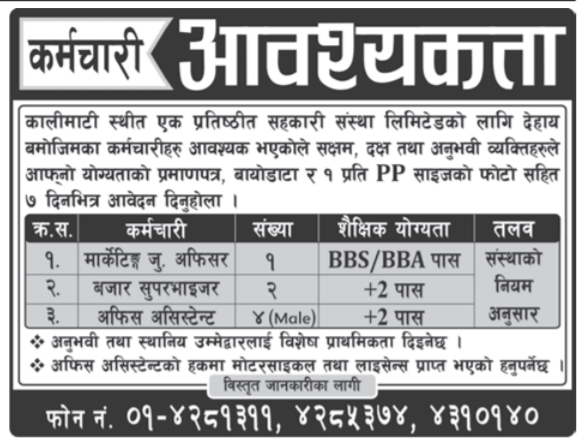 Marketing Junior Officer, Office Assistant & Other